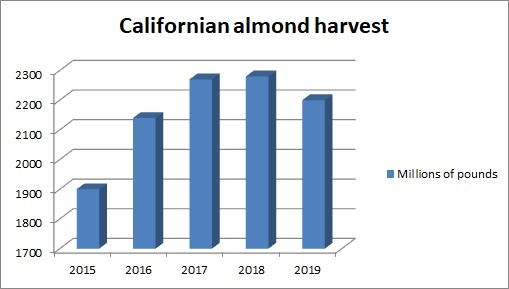 Californian almond harvest